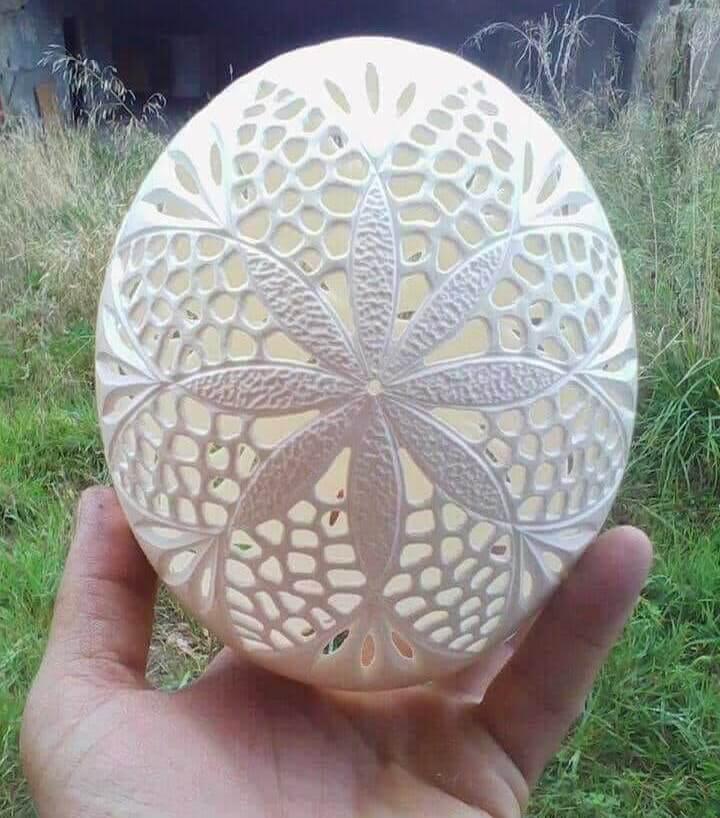 Arte em ovo de avestruz - Art in ostrich egg - Jorge Lamuria