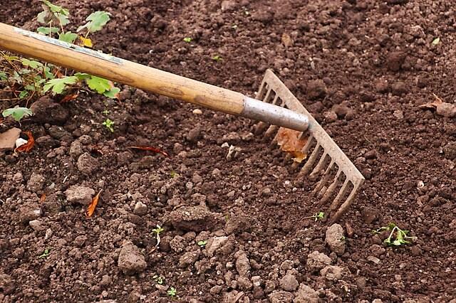 Trabalhar a terra - Dia do trabalhador