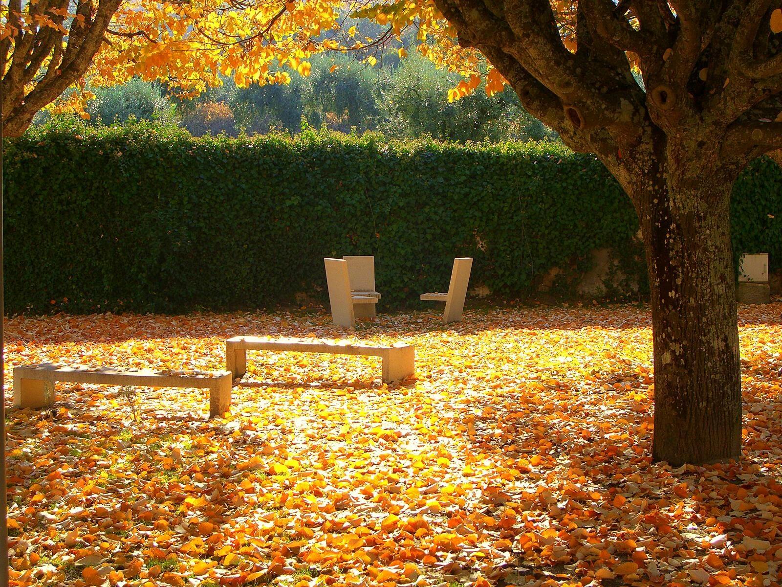 Jardim enfeitado com as cores de outono Fotografia de Bruno César