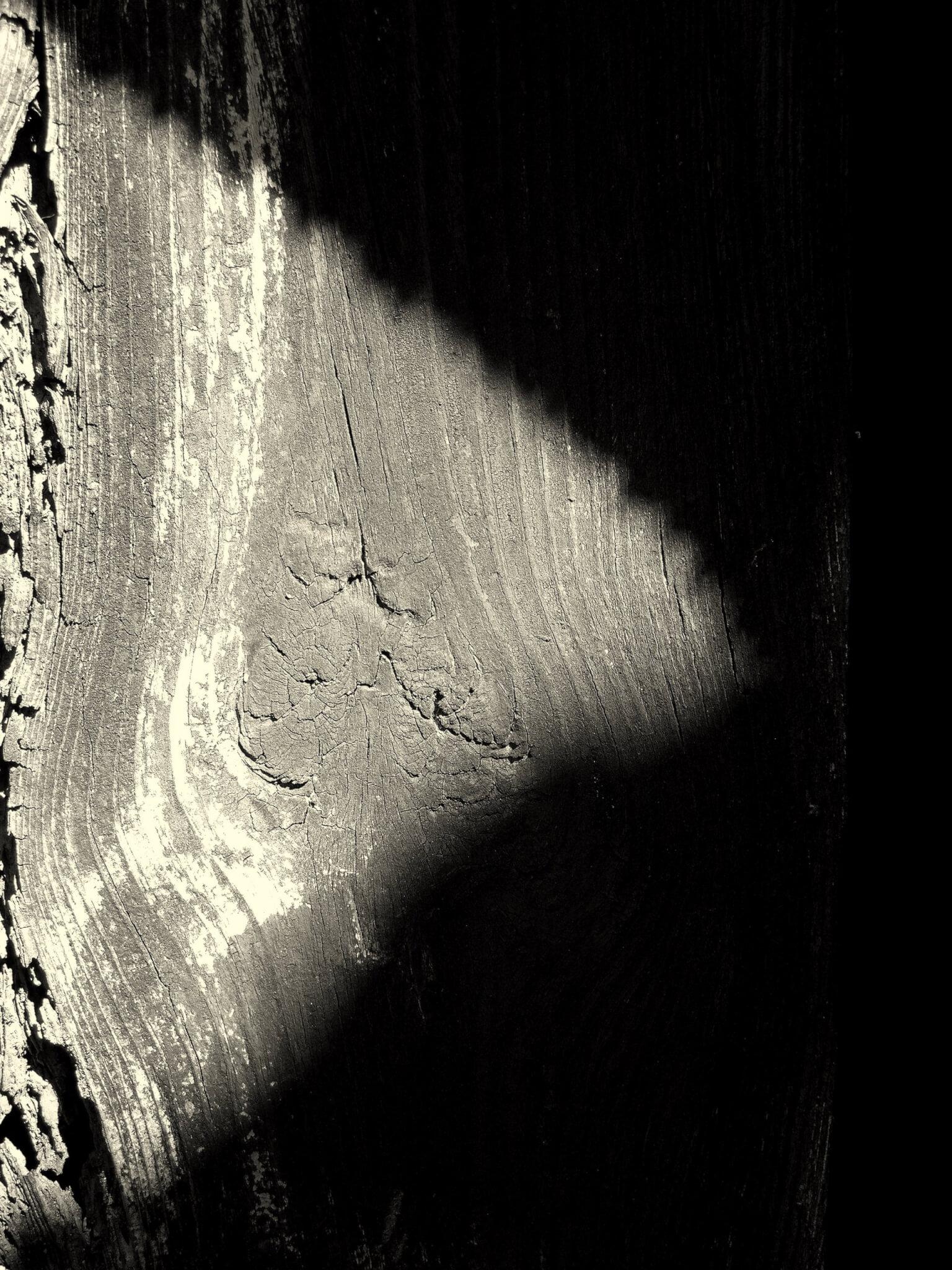 Luz e Sombra uma fotografia de Bruno César